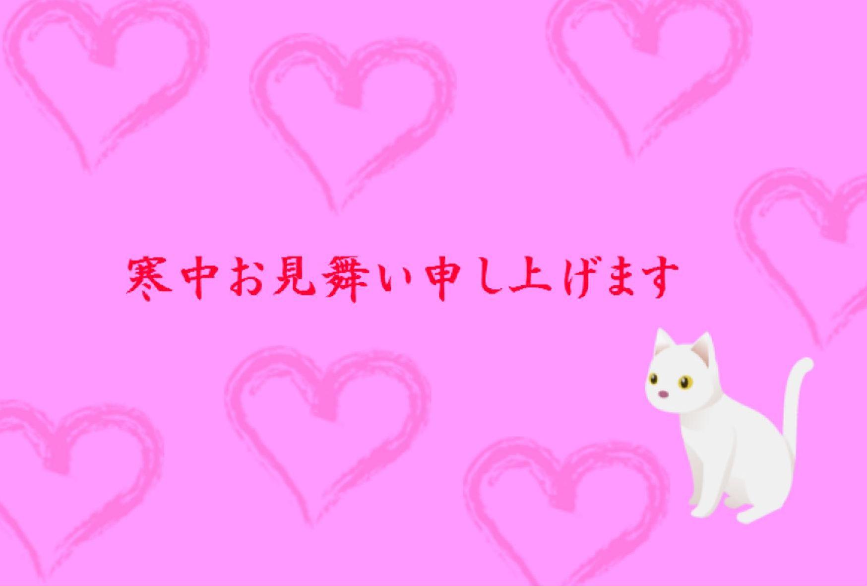 kantyu_n_p
