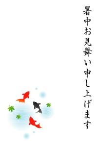 kingyo1_syotyumimai