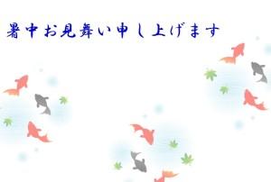 kingyo1_syotyumimai_y1
