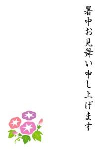 asagao1_syotyumimai