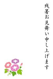 asagao1_zansyomimai