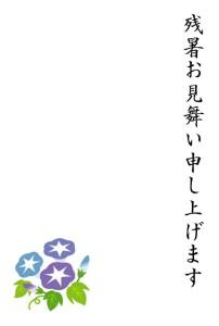 asagao2_zansyomimai